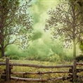 Click Props Background Vinyl with Print Forest Fence 1.52 x 1.52M