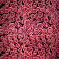 Click Props Background Vinyl with Print Roses Distressed Pink 1.52 x 1.52M