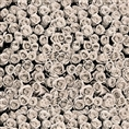 Click Props Background Vinyl with Print Roses White 1.52 x 1.52M