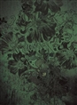 Click Props Background Vinyl with Print Flowerbomb Green 2.13 x 2.90M