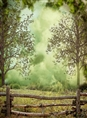 Click Props Background Vinyl with Print Forest Fence 2.13 x 2.90M