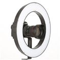 Falcon Eyes Bi-Color LED Ring Lamp Dimmable DVR-384DVC on 230V